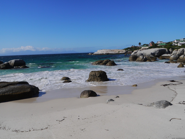 boulders beach kapstadt