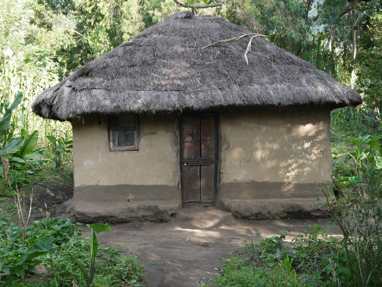 Ari Tribe - House
