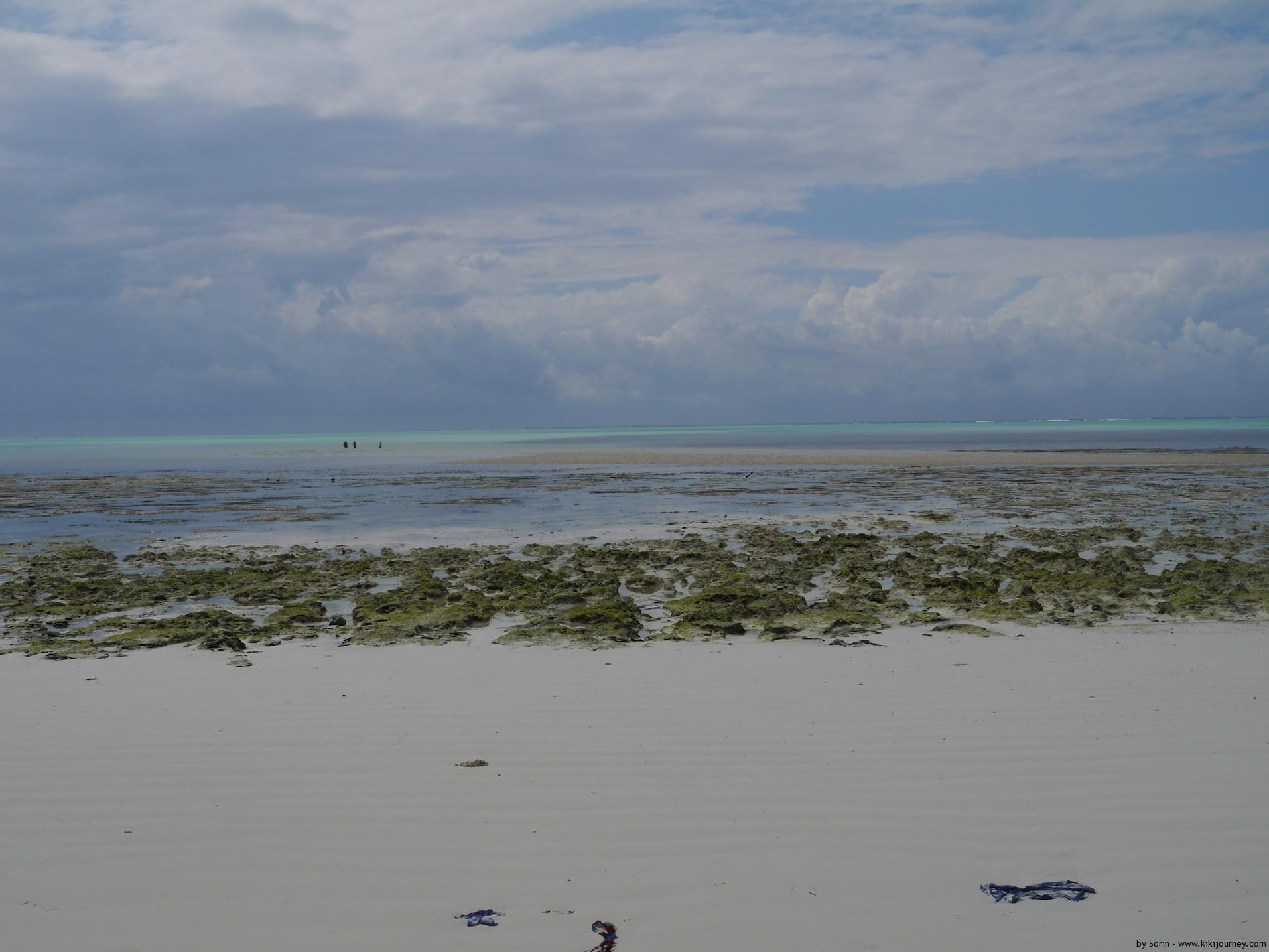 Zanzibar Paje Beach