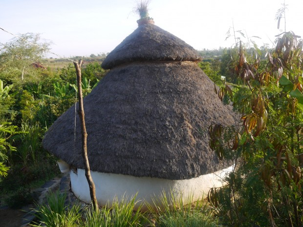Strawberry Fields Eco Lodge
