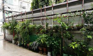 garden s44room