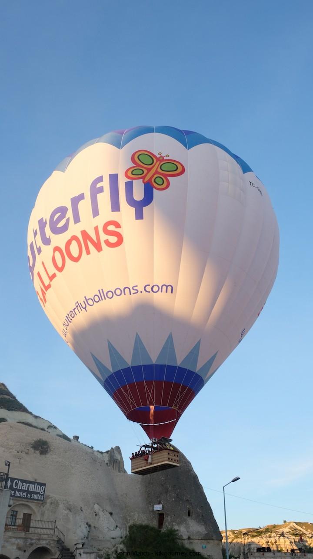 Butterfly Balloons Cappadocia