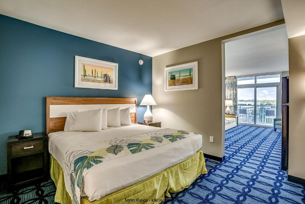 hotels near gay dolphin myrtle beach