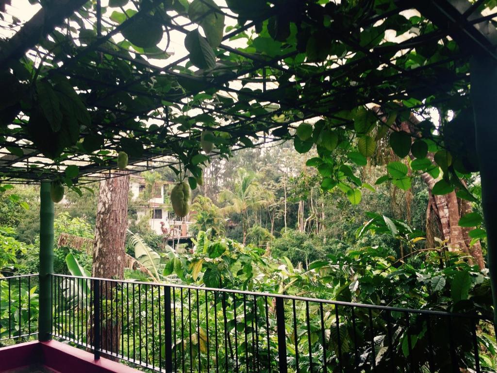 Eco Friendly HotelsPanama