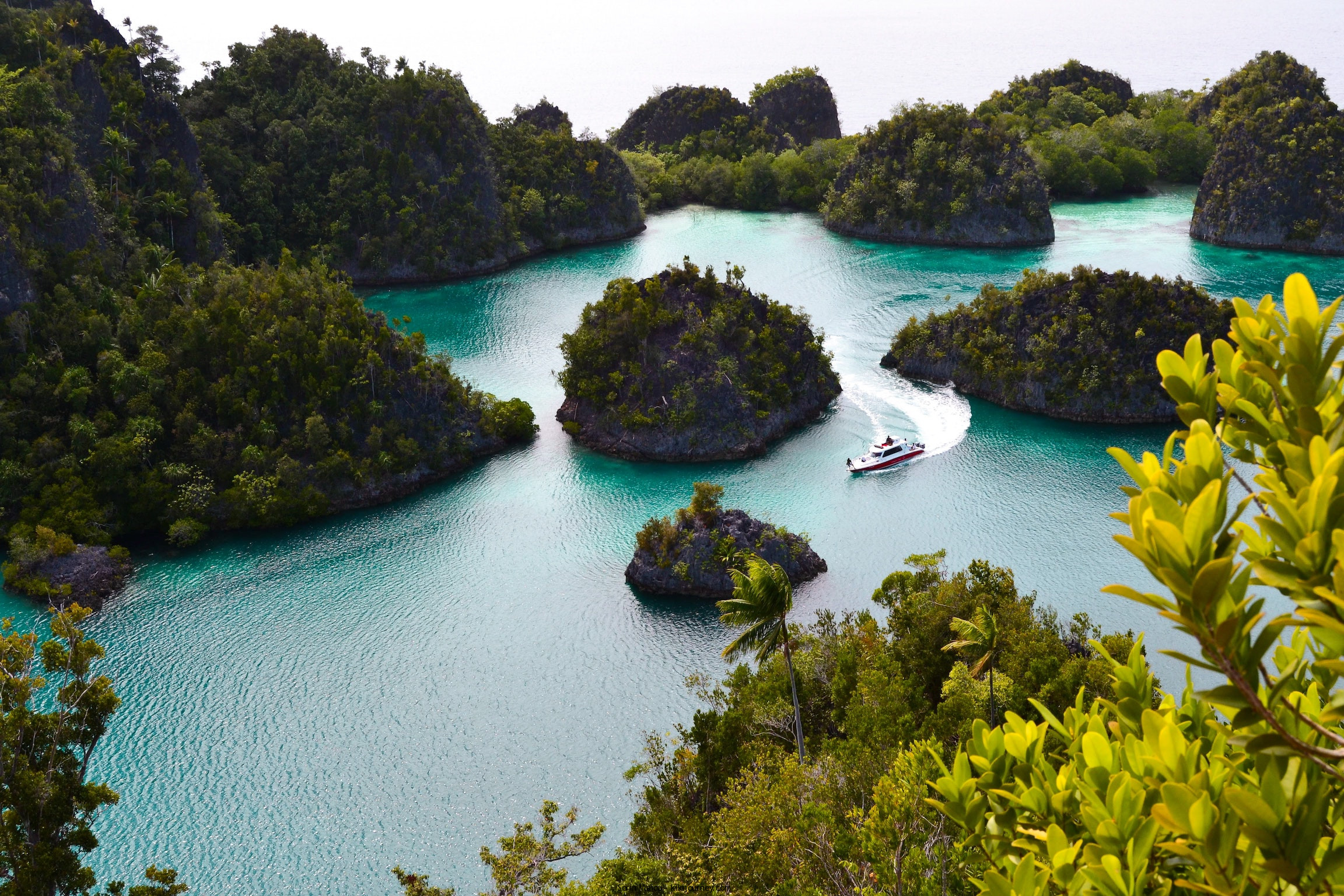 Indonesian cruise
